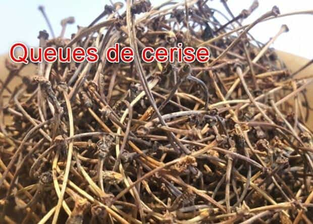 Vertus et bienfaits de la tisane de queue de cerise
